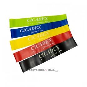 MINI BANDAS DE RESISTENCIA 380-598 CICADEX