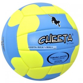 BALON PARA VOLLEYBALL WX-1570 PIONEER