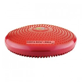 CORE STABILITY DISK GF-CDISK GO FIT