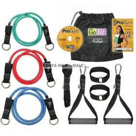 SET ULTIMATE PRO GYM GF-PGYM-DVD GO FIT
